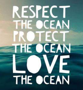 respect the ocean мем для изучения английского языка